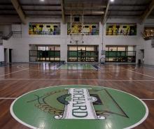 Basketball 1